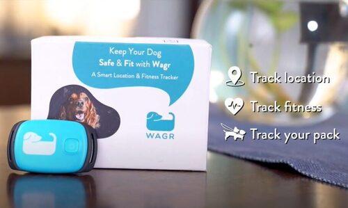 Wagr - ad film - brand film- thumbnail
