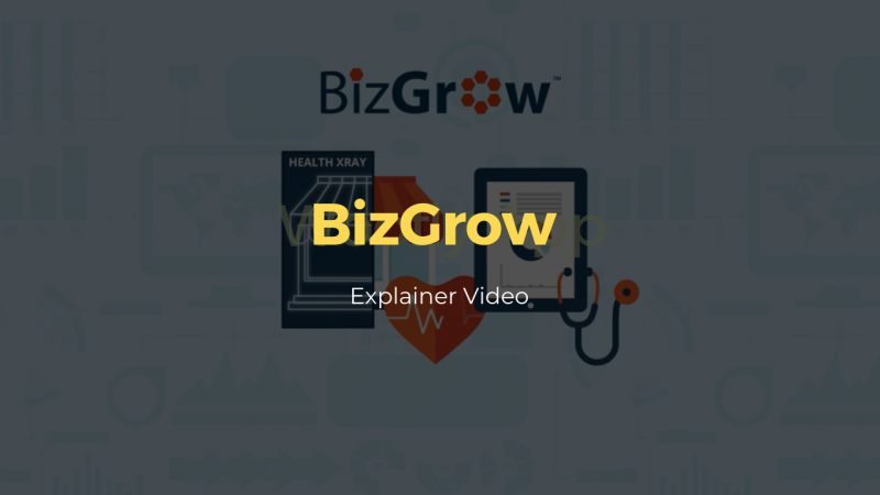 bizgrow - explainer video animation - motion graphics - thumbnails2
